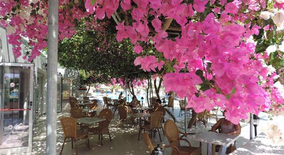 Corfu Hotel 3+*, Kipre