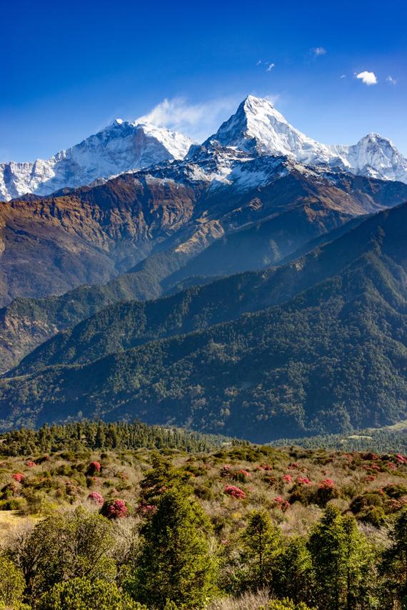 Anapurna, Himalajai