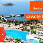 408_turkija_flyout