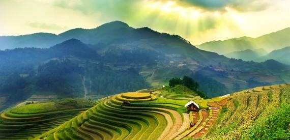 Hoang Lien Son kalnai Vietname