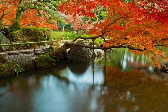 Koishikawa Korakuen botanikos sodai Japonijoje