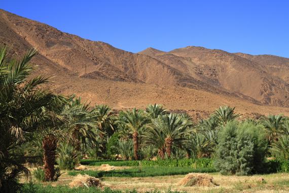 Maršrutas Zagora-Tafraoute, Maroke